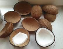 Альтернативные способы вскрытия кокоса