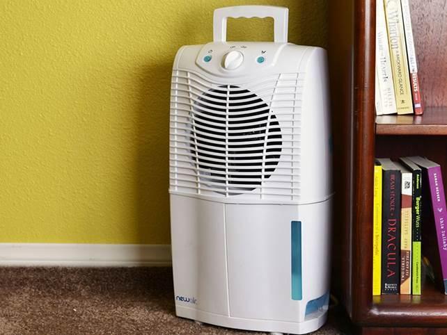 Как справиться с повышенной влажностью в комнате